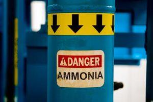 Como prueba de la solubilidad del gas amoniaco