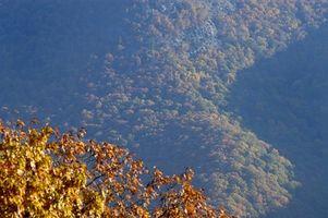Ubicaciones de la boda en las montañas de Carolina del Norte