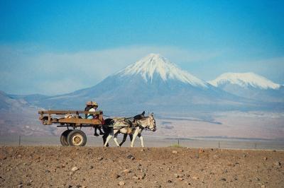 Desiertos en todo el mundo