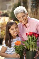 Cómo tener una buena relación de larga distancia con un nieto del niño