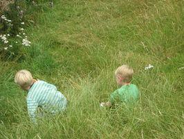 Diversión, juegos y actividades para los niños gratis