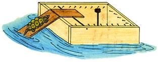 Cómo construir trampas para tortugas