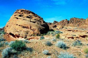 Se ve amenazado el ecosistema desierto, o en cualquier tipo de peligro?