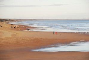 Cinco procesos de meteorización en la formación de playas