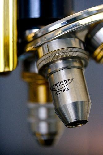 Las ventajas de un microscopio compuesto
