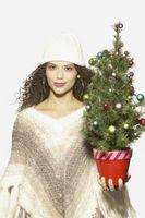 Cómo plantar un árbol de navidad en maceta