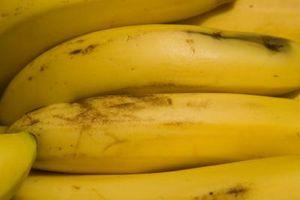 Proyecto de ciencias sobre los plátanos de maduración