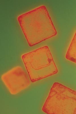 Proyectos de ciencias para el crecimiento de cristales de sal de Epsom
