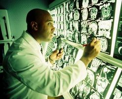 Temas de papel de Investigación de Neurociencia