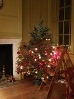 Cómo mantener a su árbol de navidad fresco y saludable