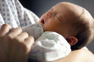 Cómo elegir una Traer-Baby-Home Equipo