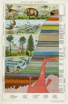La debilidad de los Principios de citas geológicas
