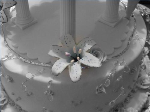 Definición de las placas de la torta
