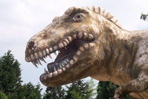 Juegos de dinosaurios para niños