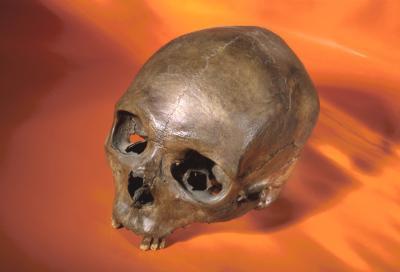 Las características anatómicas de los humanos modernos