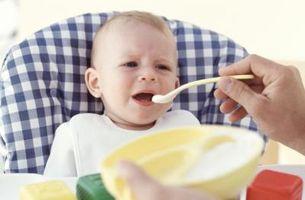 Los mejores del bebé trituradores de alimentos