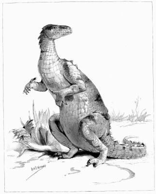 Tipos de dinosaurios que vivieron