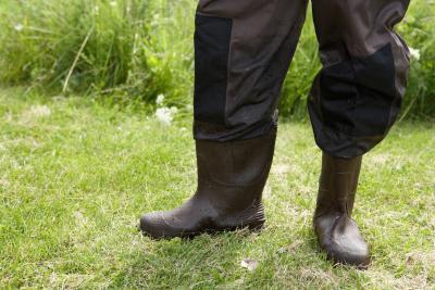 Vadear Zapatos: Felt vs. Suela de goma