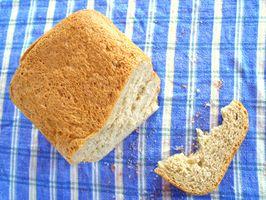 ¿Afecta la temperatura el tiempo que toma para la formación de moho en el pan?