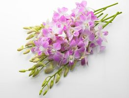 Boda DIY arreglos florales