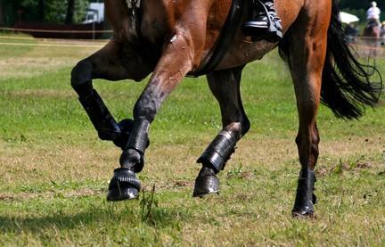 Cómo convertir los caballos de fuerza para levantar