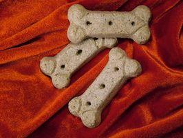 Regalos comestibles para perros