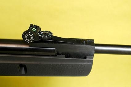 Remington Información del rifle