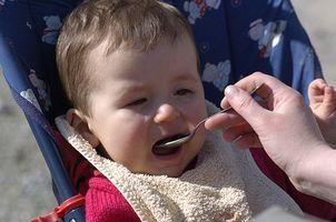 ¿Qué alimentos debo Primero Dar a conocer a mi bebé?