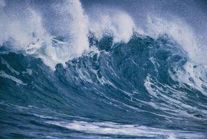 Los tsunamis Impacto en seres humanos