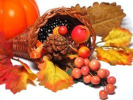 Ideas de Acción de Gracias de la magdalena y de la torta