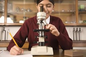 Instrucciones para el almacenamiento de los microscopios compuestos