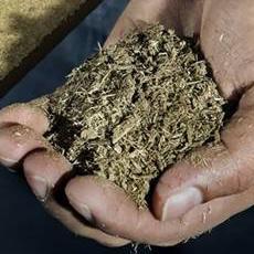 Cómo hacer fertilizante orgánico líquido