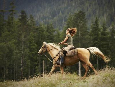 Diversin Juegos de caballos gratis para las nias  Cusiritaticom