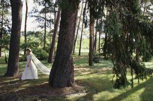 Las bodas rústicas en Georgia