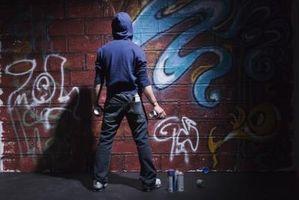 La juventud tasa de criminalidad y sus teorías