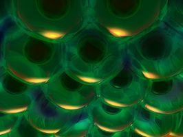 Maneras de examinar una estructura celular y su función